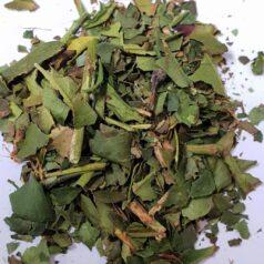 Tasmanian White Tea